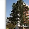 <br /><br /><br /><br /><br /><br /><br /><br /><br />Klinikum Lippe Lemgo
